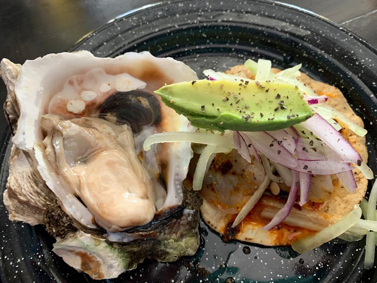 Oysters from Piquillas in Mazatlan, Mexico