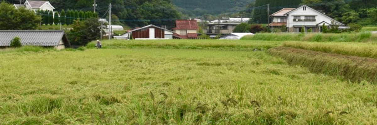 Experience Rural Japan at a Farmhouse Stay in Ubuyama