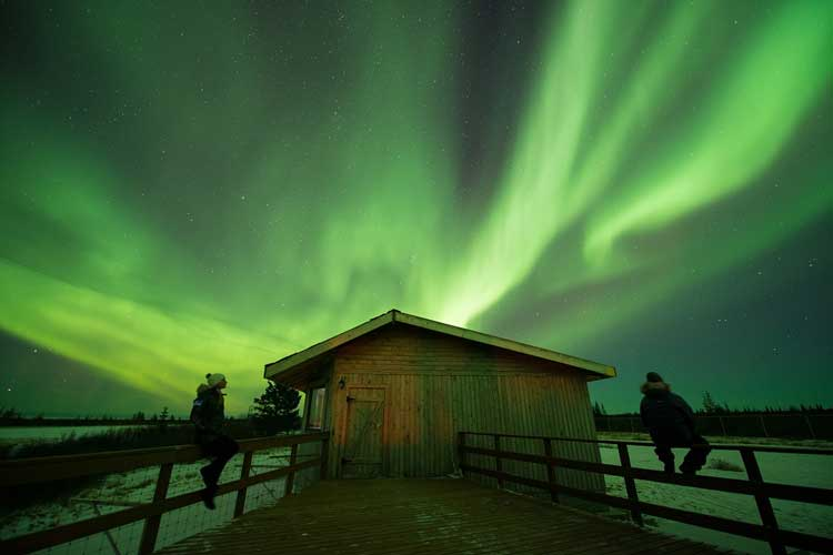 Aurura borealis near Churchill