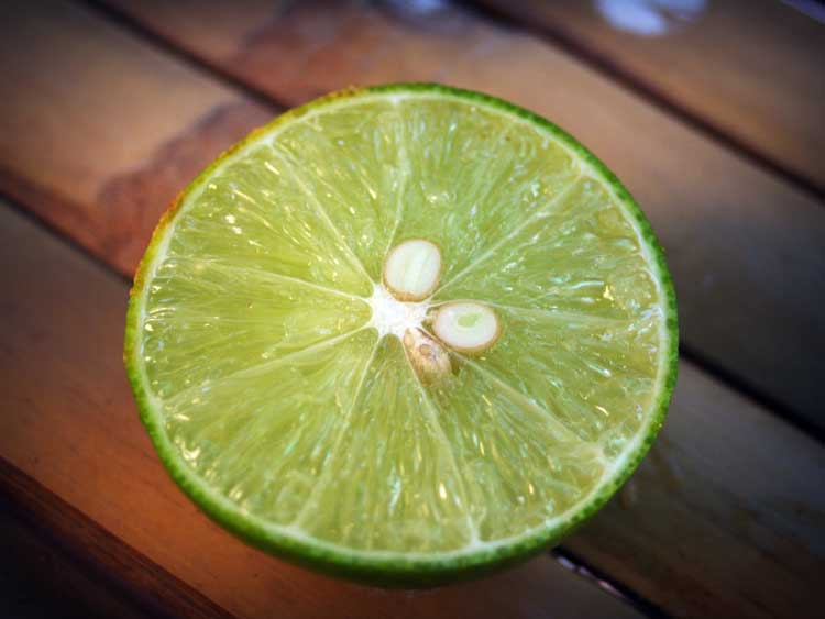 Lime in a pisco sour cocktail