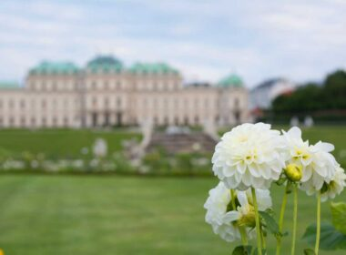 Vienna in the spring