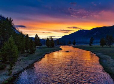 Yellowstone National Park is a popular stop during a Wyoming road trip.