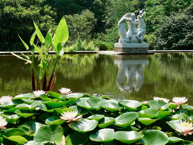 Water lilies and sculpture are among attractions at Brookgreen Gardens. Photo by Jim Lawrence/Dreamstime/com