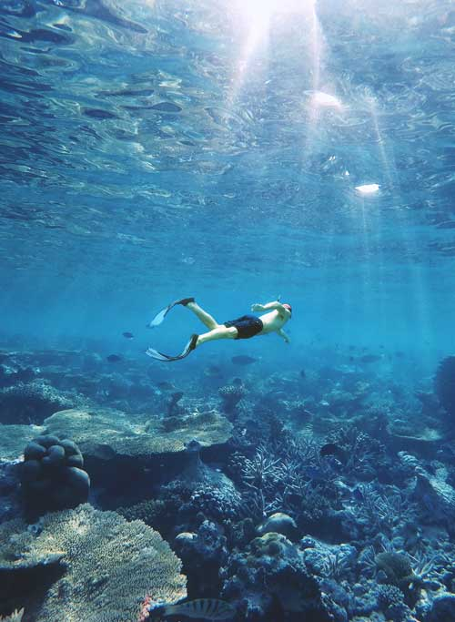 Snorkeling through crystal-clear water to see the Turks and Caicos coral reef.