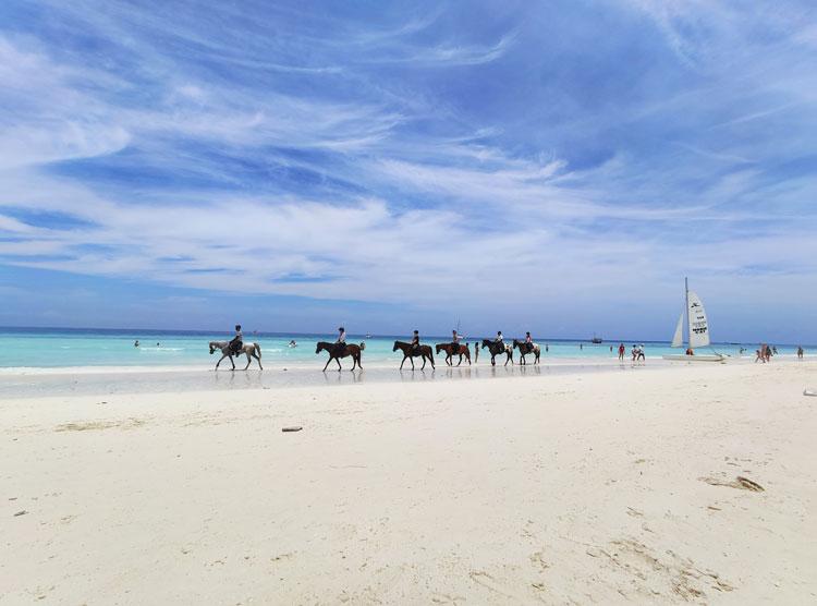 A group riding ponies along the shore near Long Bay Beach.