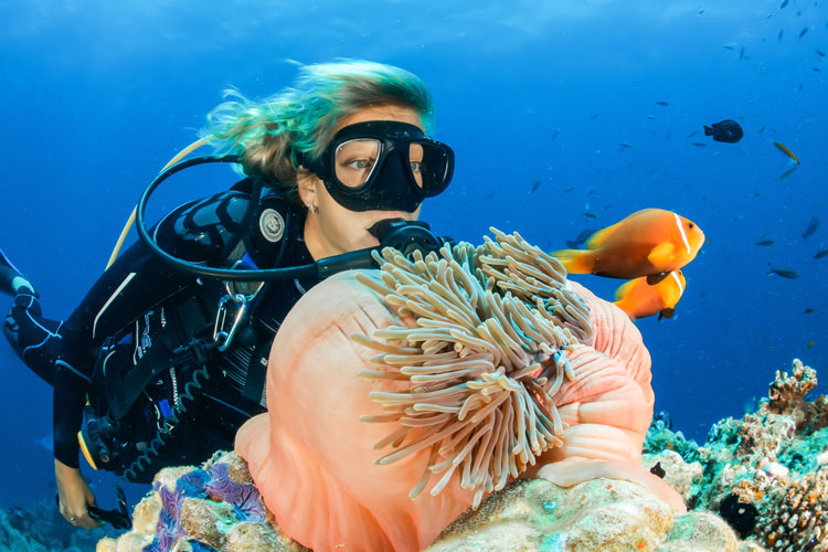 A scuba diver takes in the beauty of the rainbow colored coral reef and marine wildlife.