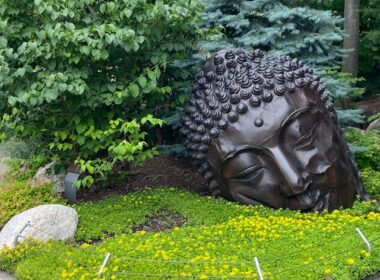 DeVos Japanese Gardens