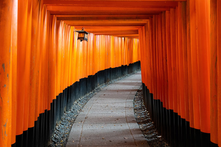 Thousands of vermilion torii gates make up this shinto shrine in kyoto, Japan.