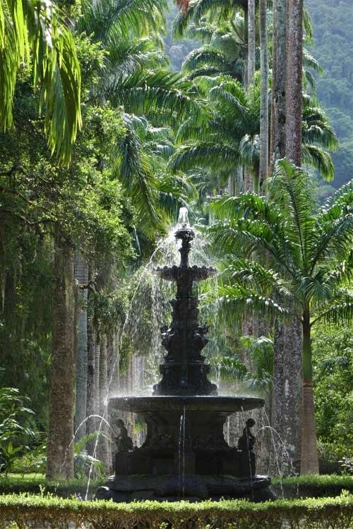 The famed Botanic Gardens of Rio.