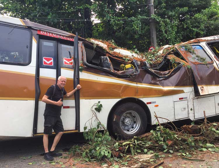 Bus on the streets of Rio that was destroyed by a palm tree falling on it.