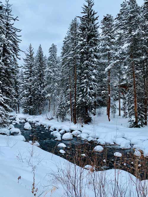 Right beyond the Grand Hyatt hotel into the snowy nature of vail on the Gore Creek trail.