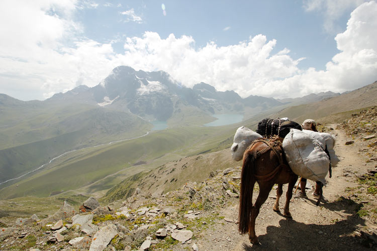 A porter carries supplies of a trekking group over Zajibal pass while entering Gangbal valley, with Nundkol and larger Gangbal lake in the scene. The Harmukh peak stands tall in the background of Nundkol lake.