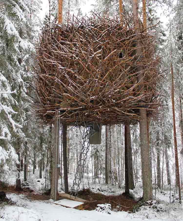 The bird nest themed hotel room in the snow.