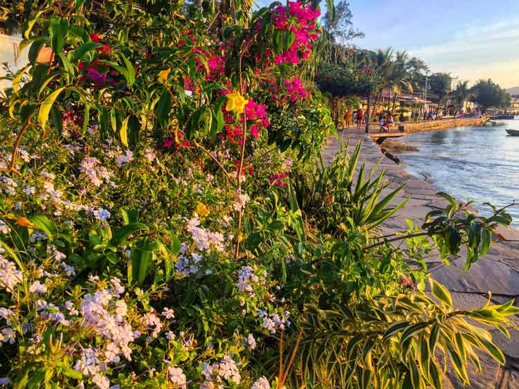 The beautiful waterfront sidewalk stretches for miles along Buzios, lined with flowers and art and shops and restaurants.