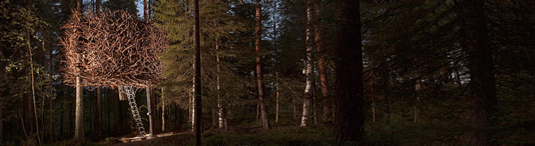 The nest room almost looking natural in the Swedish forest.