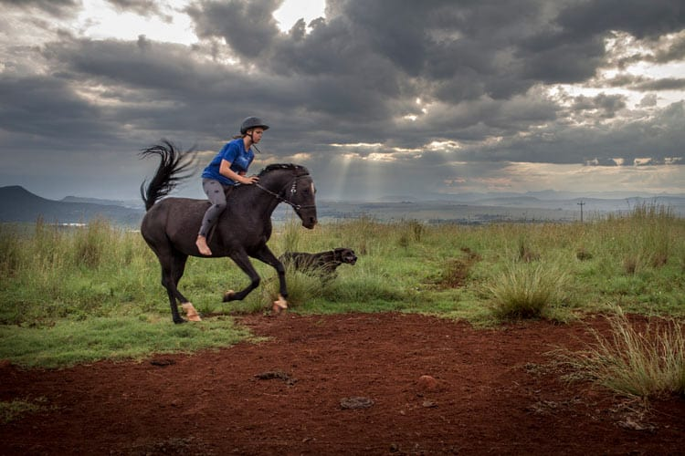 Galloping through the field with a dog companion. Photp by Adrian Rorvik