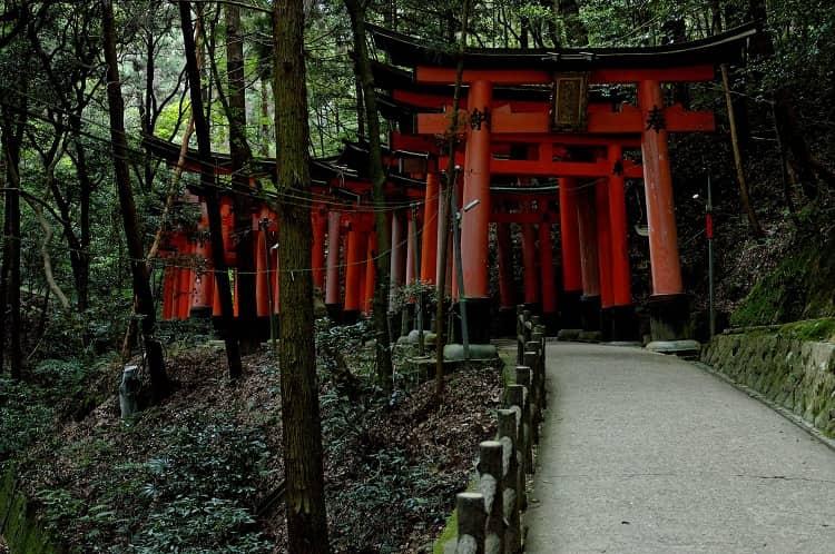 Climbing Fushimi Inari.