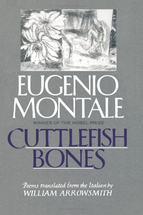 Cover of Cuttlefish Bones