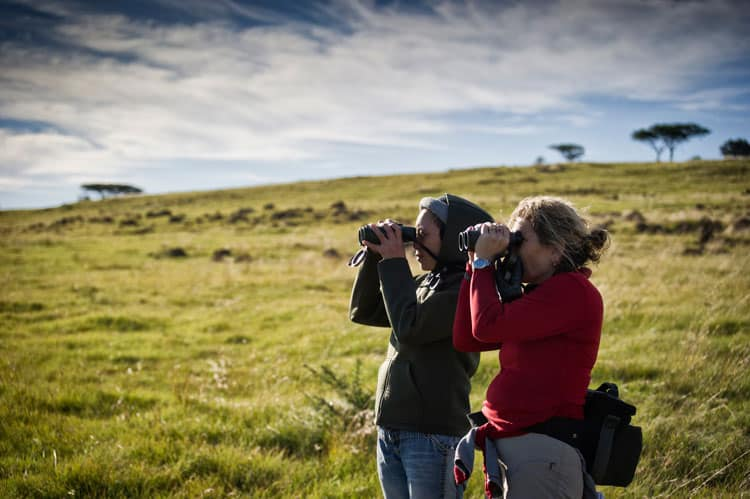 Bring the binoculars for a game walk spotting session.