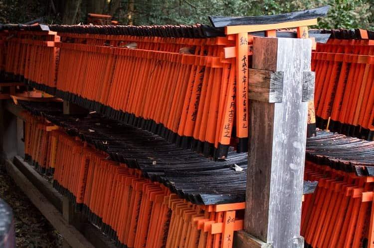 Rows of Torii Shrine.