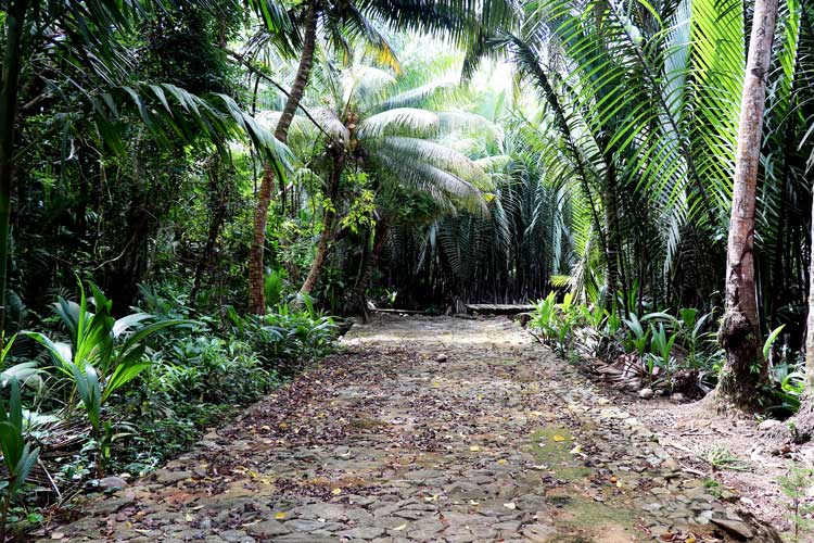 An ancient stone path connects the villages on the island of Yap.