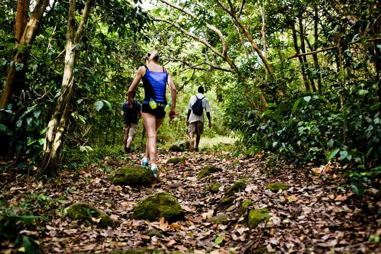 Hiking in Nevis is one of its most rewarding activities. Photo by Fyllis Hockman