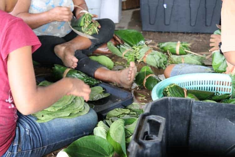 Packaging betel nut for export on Yap.
