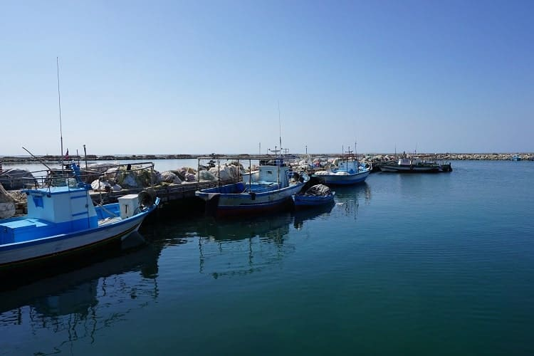 Fishing boats are waiting on the coast.