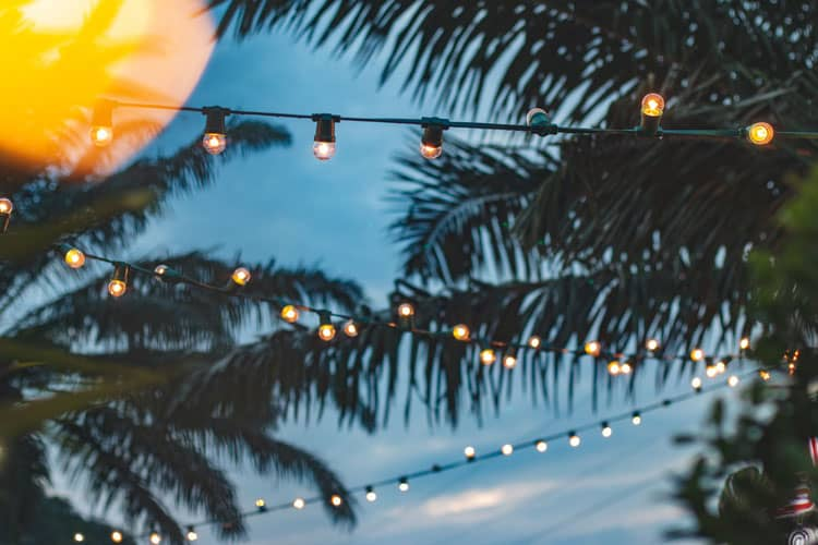 Holiday decorations in Hawaii