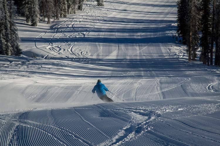 Dave Chambers carving corduroy at Wolf Creek.