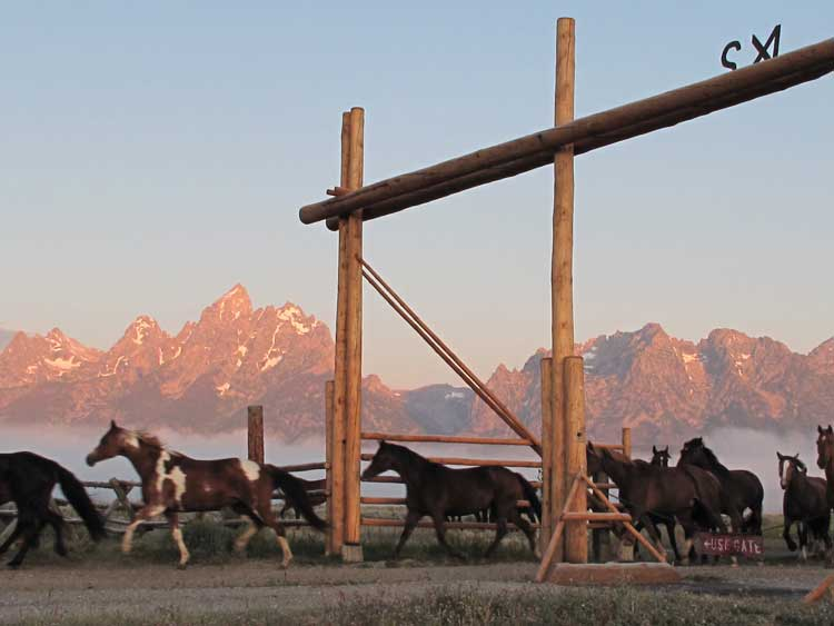 Bringing in the horses at sunset at a dude ranch in the USA