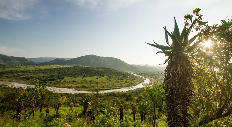 The White Umfolozi winding through the reserve. Conservation
