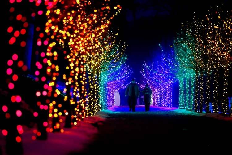 Naumkeag Winterlights.