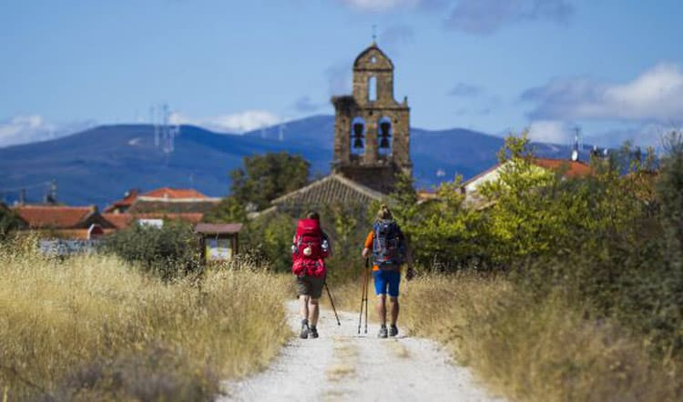 Traveling companions on the Camino