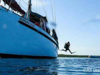 Liveaboard diving adventures