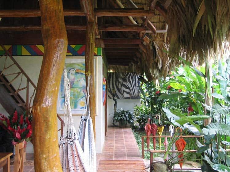 Open space at Rafiki Safari Lodge in Costa Rica