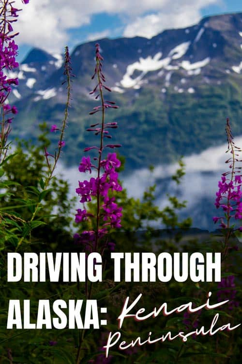 Spectacular scenery, diverse wildlife and great fishing make driving through the Kenai peninsula an unforgettable Alaskan road trip.