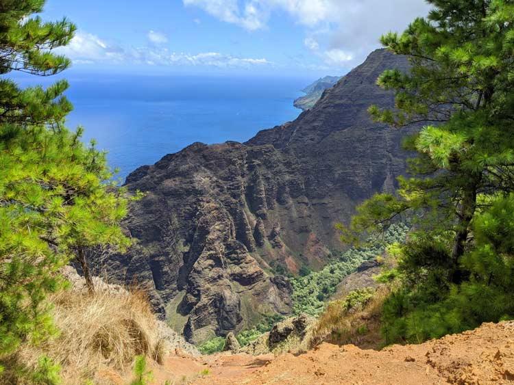 Nature in Kauai