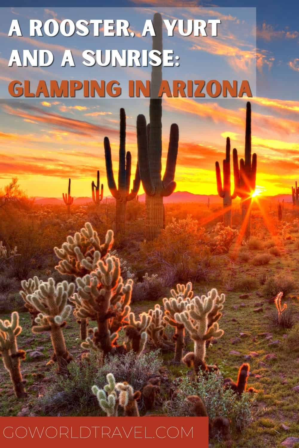 Pack your bag and get ready to go on an open-air adventure: glamping in Arizona. Here you'll visit a unique yurt with a rooster on a mini-farm.