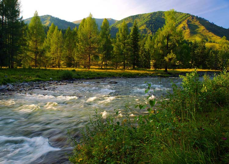 Meadows and rivers in the mountains