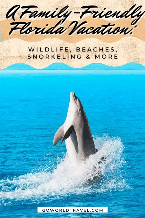 Pack your bags and don't forget the family sunscreen. A trip to Florida invites guests to dolphin-watch, enjoy eco-tours, go snorkeling and have fun with the whole family.