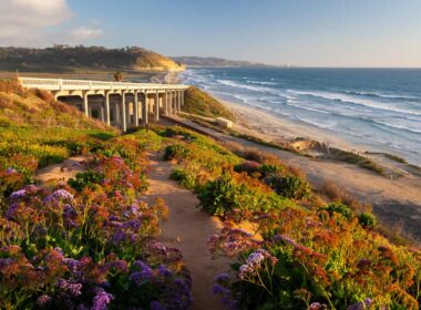 Winter travel to Torrey Pines beach in Sand Diego, California
