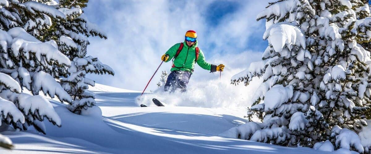 A person in a green coat and an orange helmet skis down a hill between the pine trees