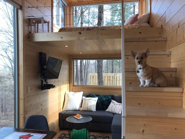 Interior of a pet-friendly tiny house in New York.