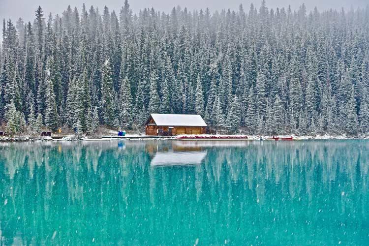 Frozen Lake cabin in woods