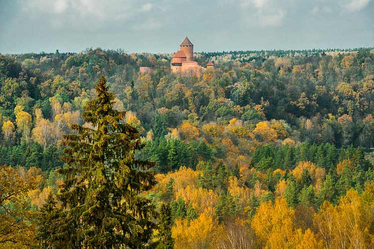 Castles in Latvia forest.