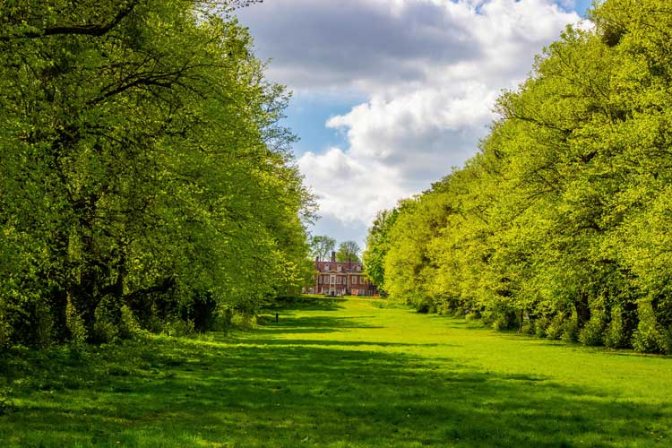 Lush greenery in Winchester