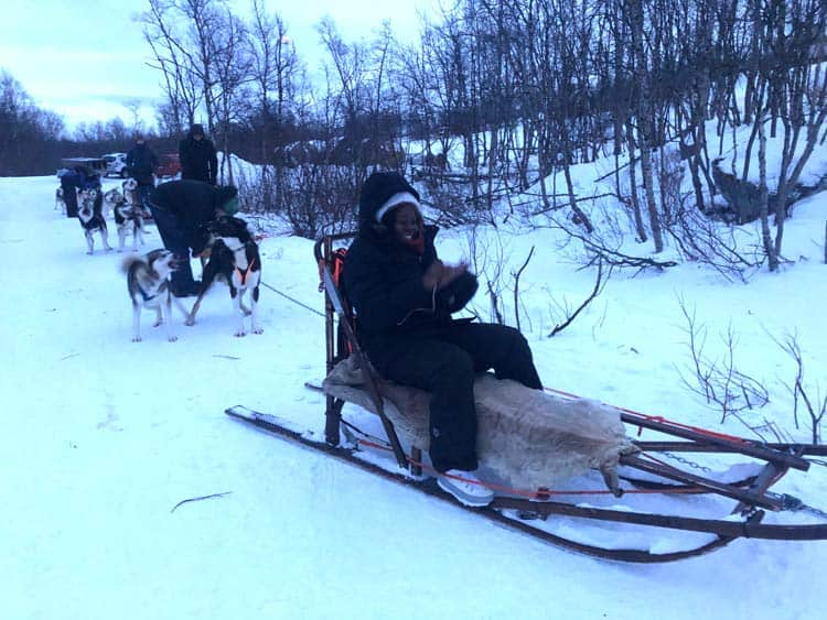 Dog sleds are led by the high-energy Alaskan husky in Sweden. Photo by Esther Nampiina and Joseph Mukama
