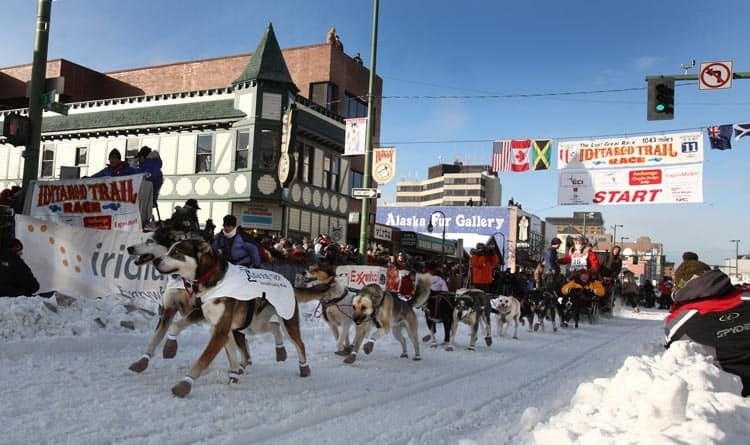 Musher Jodi Bailey, from Chatanika, Alaska, near Fairbanks, and her team set out from the start of the Iditarod sled dog race in Downtown Anchorage. Photo by Dino Vournas