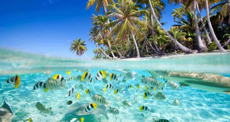 World Travel: The Maldives is among the Top 15 Bucket List Ideas